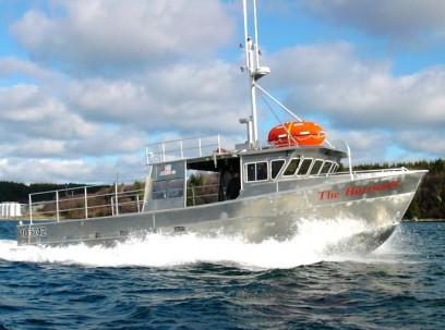 Workboat / Fishing